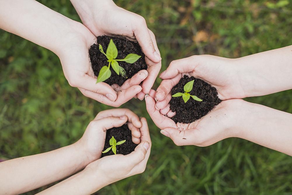 Jack Landsmanas bienestar ambiental