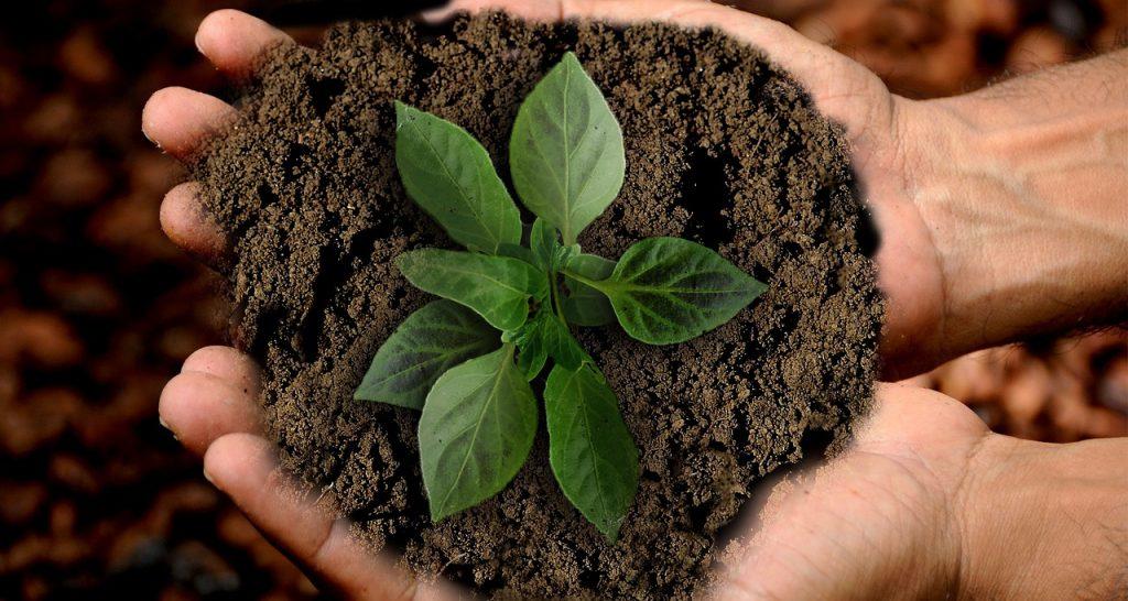 jack landsmanas negocios, los ods en la industria alimentaria, ods, objetivos de desarrollo sostenible, jack landsmanas, corporativo kosmos, grupo kosmos