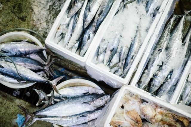 jack landsmanas, acciones a favor de la pesca sostenible, conapesca, certificaciones marine stewardship council