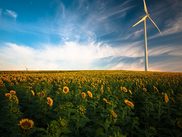 elias landsmanas, diferencia entre sustenble y sostenible